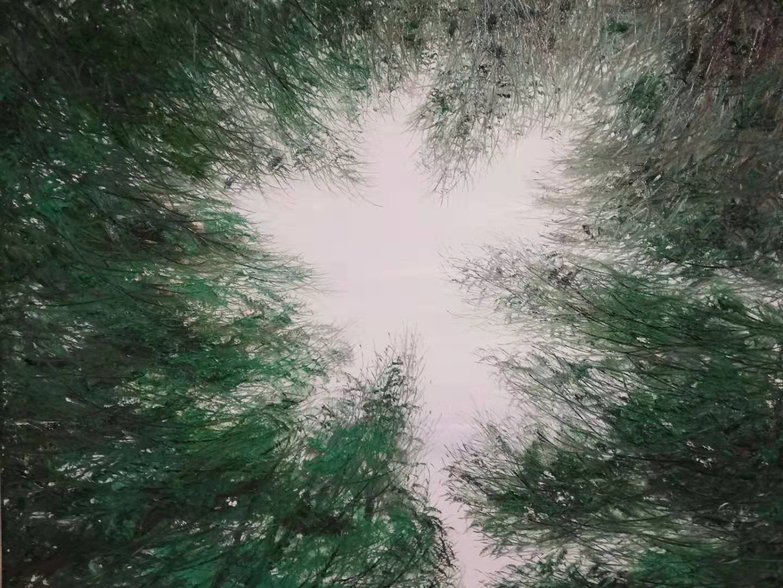 《仰望》 崔灏  油画 120×150cm