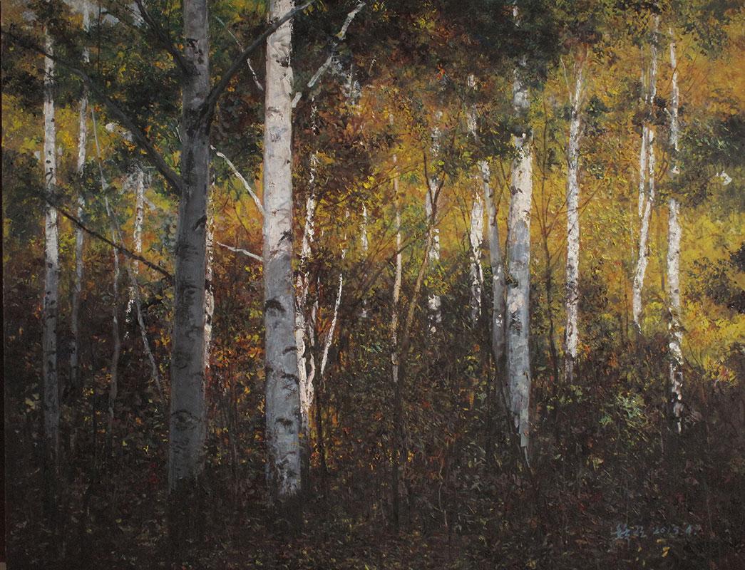 秋天的桦树林